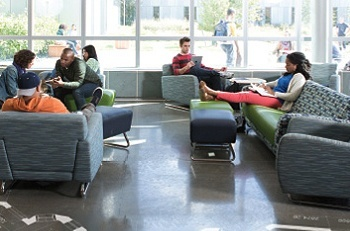 Students in Lounge